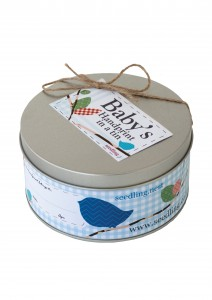 Seedling - Baby's Handprint in a Tin