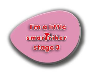 stage 3 badge